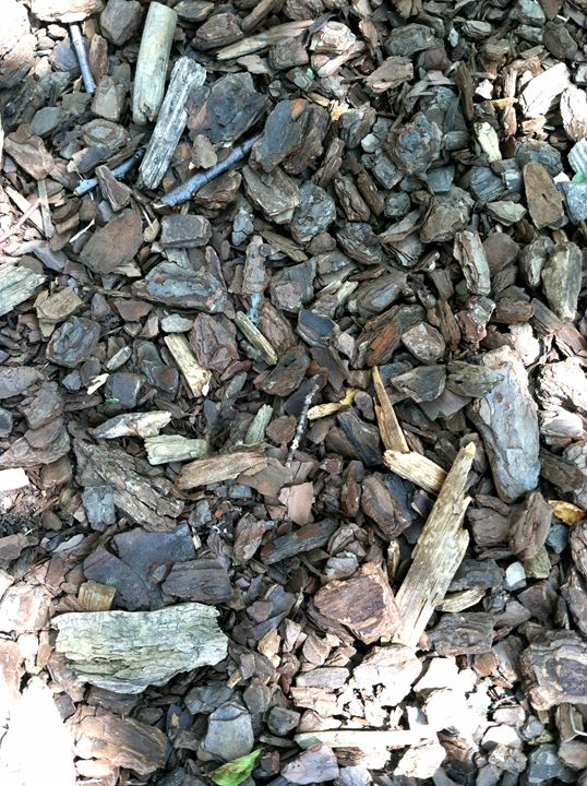 Old Wood Chips - BJames Photography