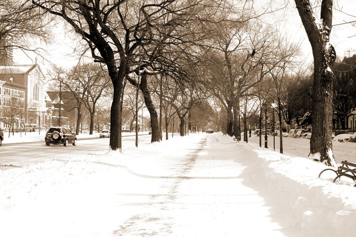 Winter in Brooklyn - BJames Photography