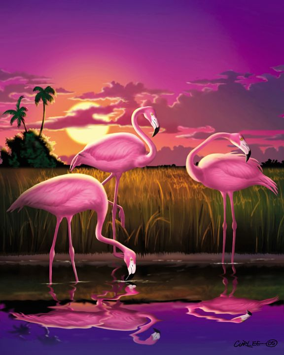 Flamingos Tropical Sunset landscape - Walt Curlee Fine Art & Prints