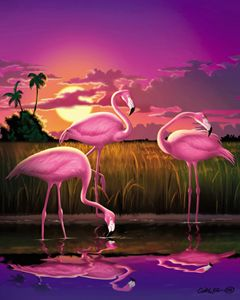 Flamingos Tropical Sunset landscape - Walt Curlee Fine Art & Prints