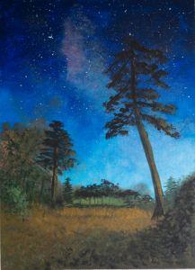 """""""Night sky"""" - Silvana Bennardo"""