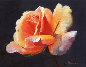 "© Laura Gabel, ""Lesla's Rose"". 8x10,"