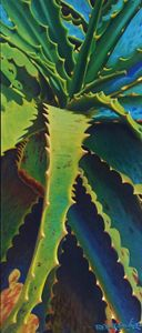 Aloe y Vera - Robert C. Murray II