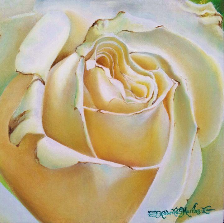White Rose - Robert C. Murray II