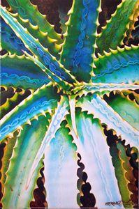 Savila Torquesa-55 x 75 cm - Robert C. Murray II