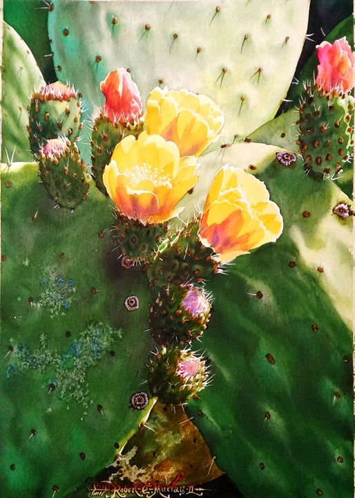 Cactus Roses - Robert C. Murray II