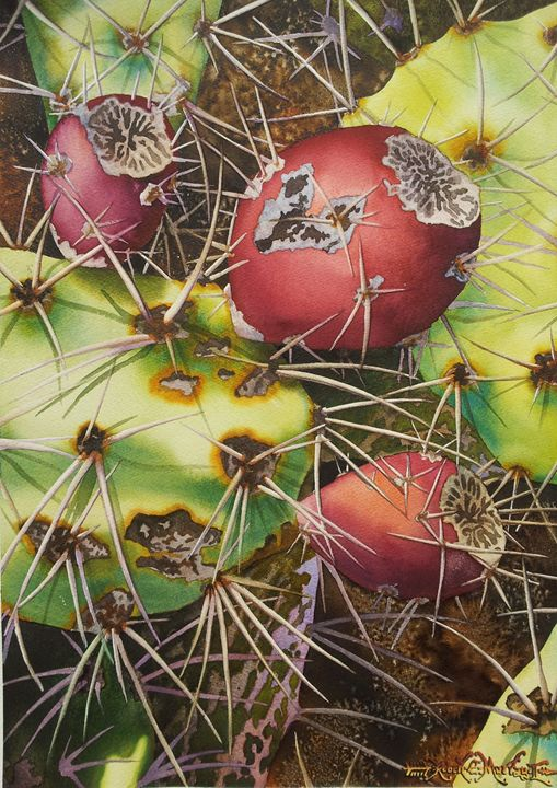 Tuneras Rojas-Red Prickley Pears - Robert C. Murray II