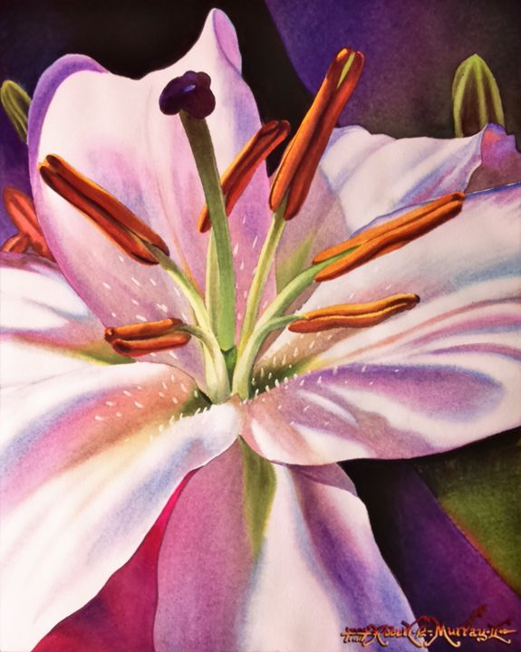 White Tiger Lily - Robert C. Murray II