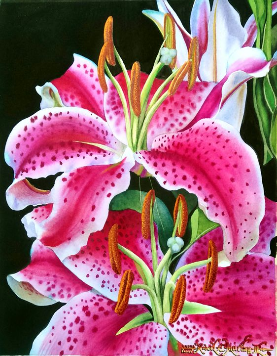 Tiger Lilies - Robert C. Murray II