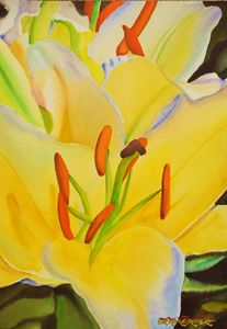 Yellow Lillies-35 x 50 cm - Robert C. Murray II