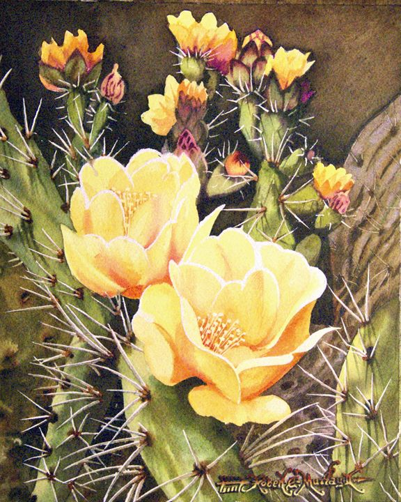 Tuneras en Flor-Cactus Flowers - Robert C. Murray II