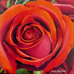 Carmine Red Rose - Robert C. Murray II