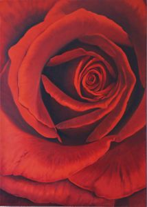 Red Rose - Robert C. Murray II