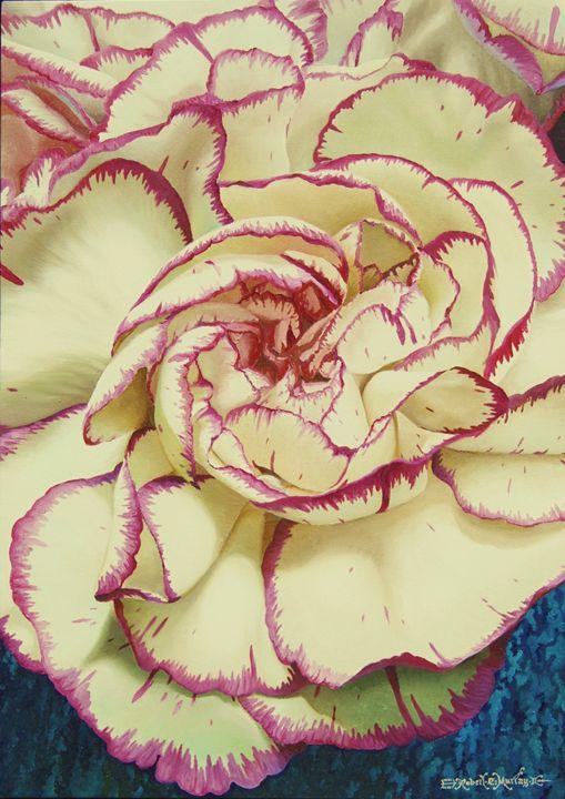 Carnations - Robert C. Murray II