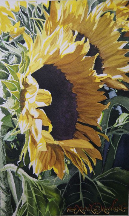 Girasoles - Robert C. Murray II