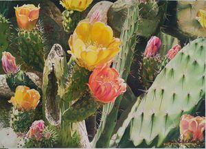Picos y Petalos-Acuarela-70 x 50 cm - Robert C. Murray II