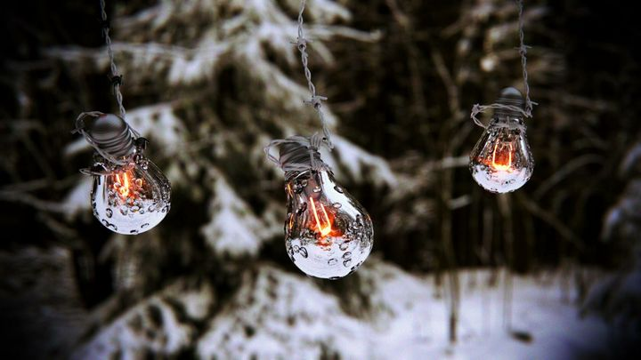 Lightbubs in the Wilderness - Joseph Farah