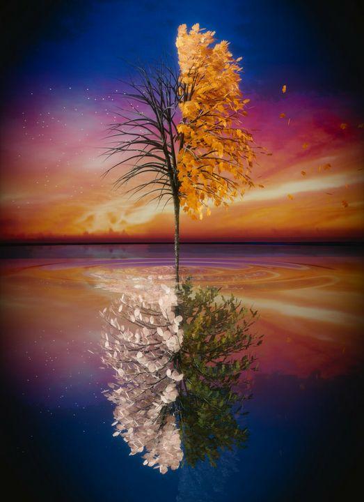 Eternal Reflection - Joseph Farah