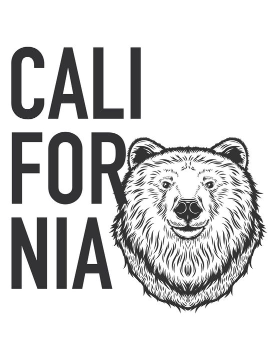 Californian Bear - Coletivo Box Lab