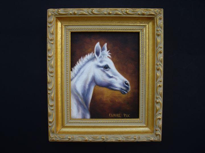 White foal - claire fix fine art
