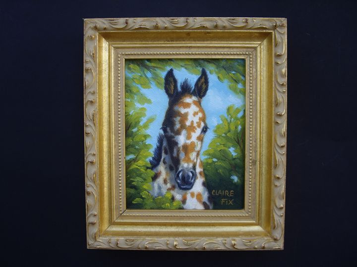 Leoapard Appaloosa foal - claire fix fine art