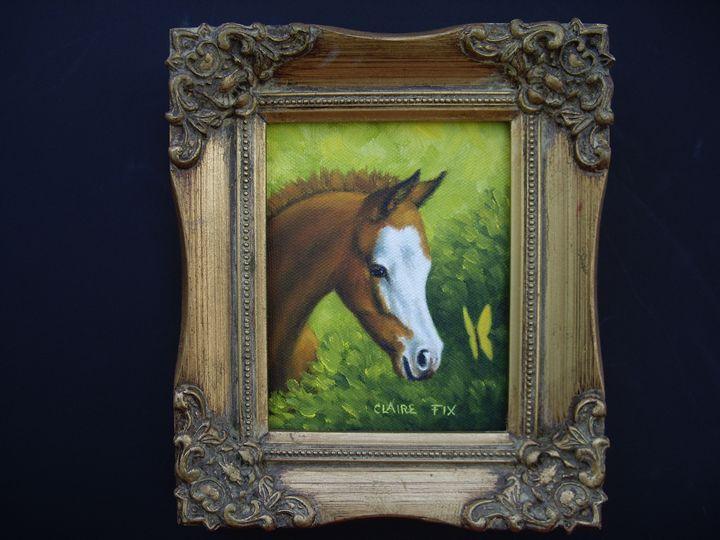 Bald face foal - claire fix fine art