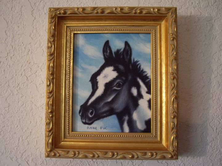 Black & white pony foal - claire fix fine art