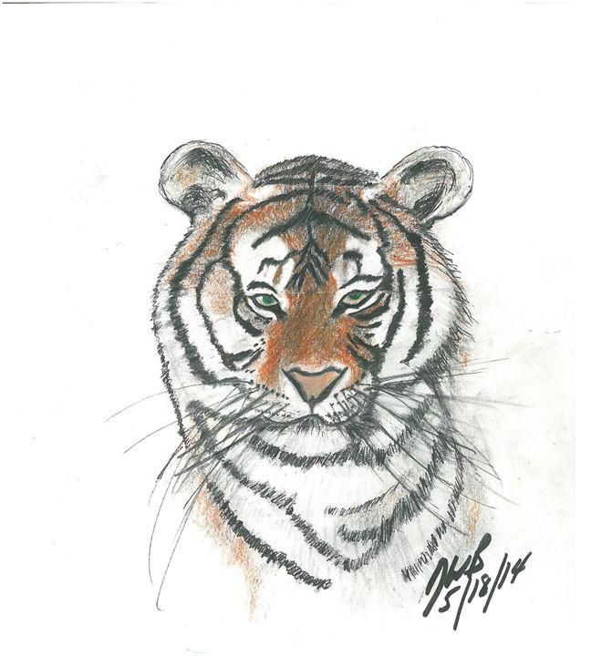 Majestic Bengal Tiger Sketch - BryanSketches