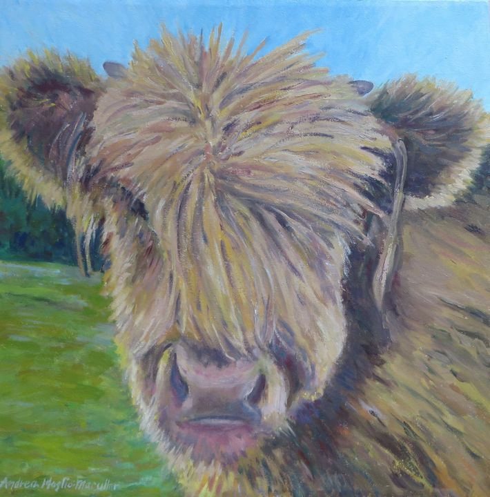 Highland Cow - Andrea Maglio-Macullar