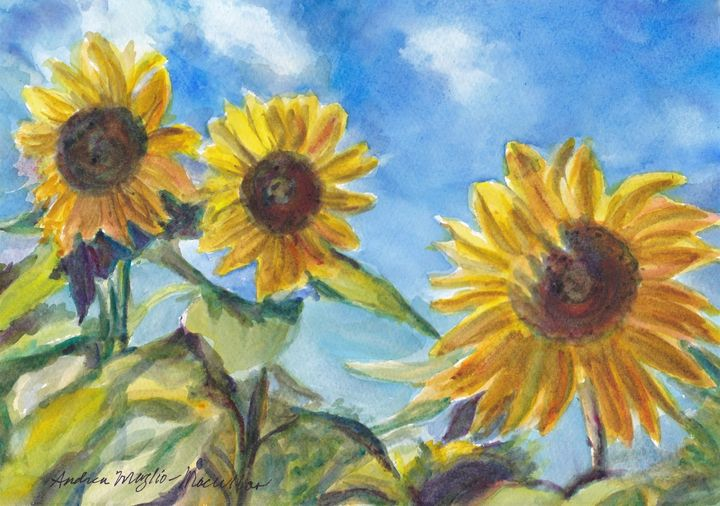 Sunny Flower Day - Andrea Maglio-Macullar