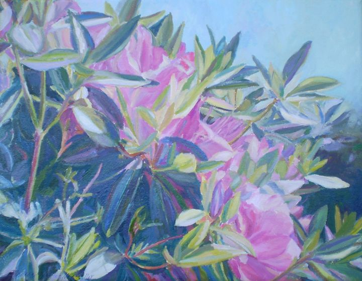 Rhodies in the Mist - Andrea Maglio-Macullar