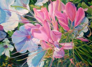 Cleome Explosion - Andrea Maglio-Macullar