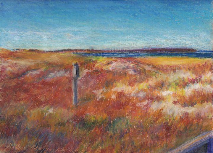 Crane Beach Looking North - Andrea Maglio-Macullar