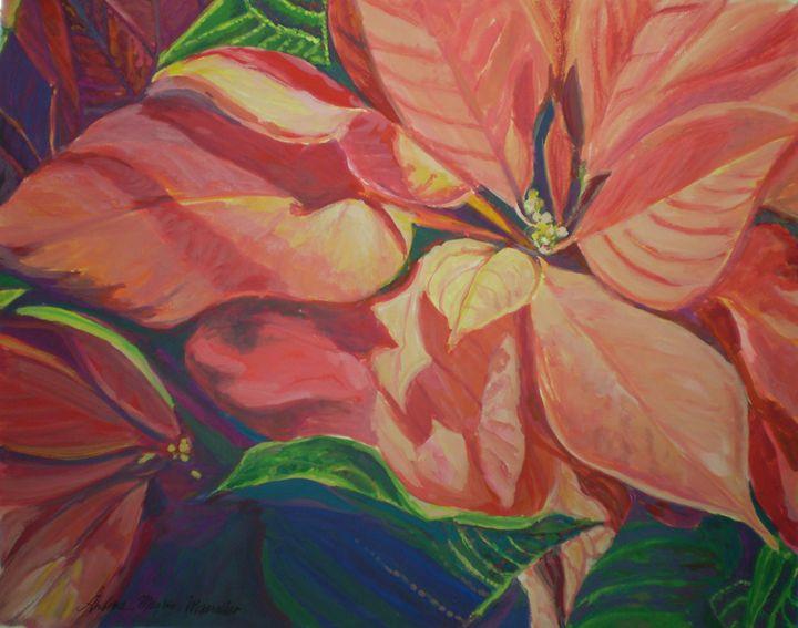 Pinkish Pointsettia - Andrea Maglio-Macullar