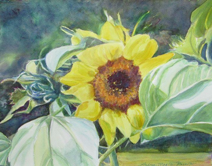 Sunniest Flower - Andrea Maglio-Macullar
