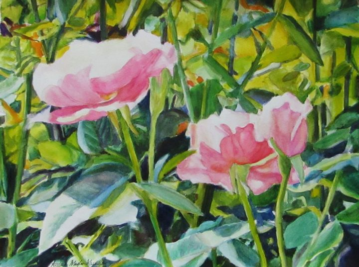 Roses in the Light - Andrea Maglio-Macullar