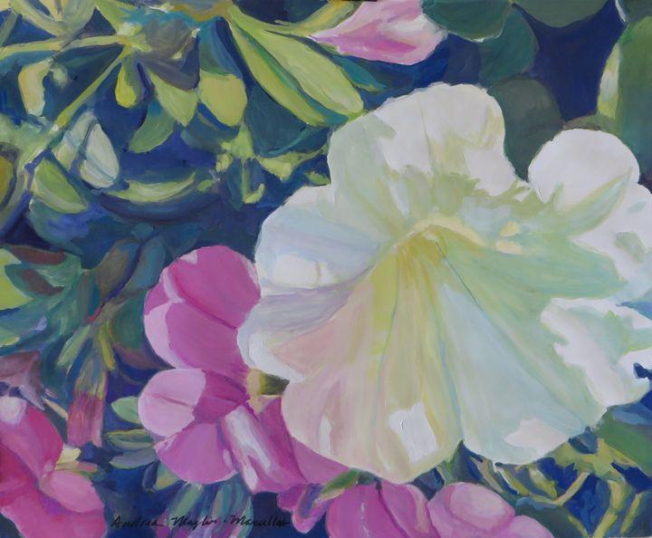 White Petunia - Andrea Maglio-Macullar