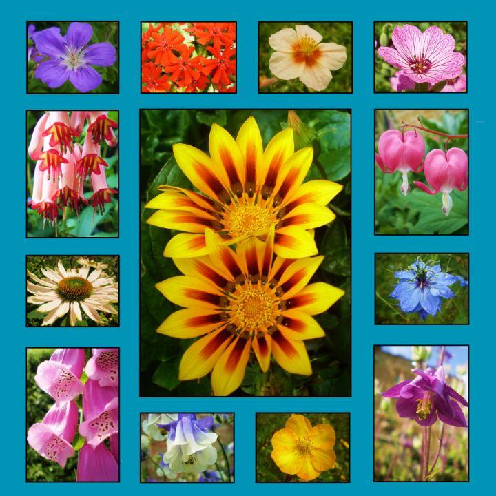 Flower Group 1 - Ian G