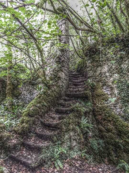 Fussell's Steps - Ian G