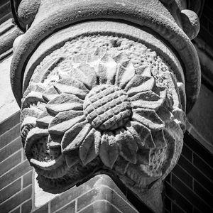Sunflower Ornamental Block