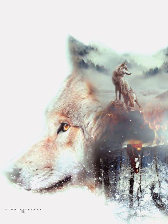 crywolf - Cre8tivisuals