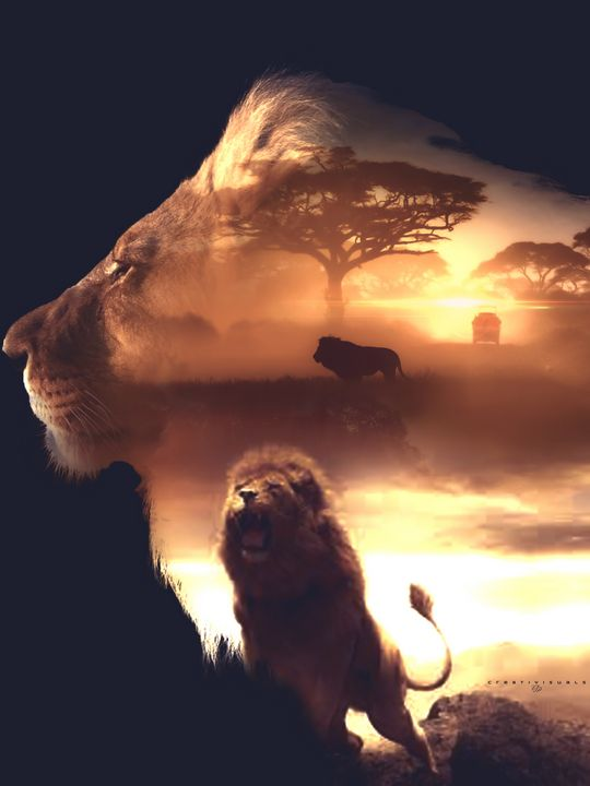 Lion Cry - Cre8tivisuals
