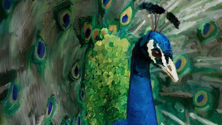Peacock - Amanda M. Leppke