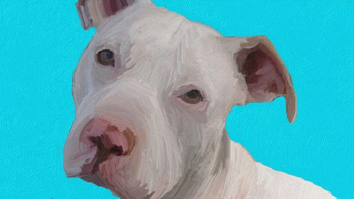 Pit Bull Pup - Amanda M. Leppke