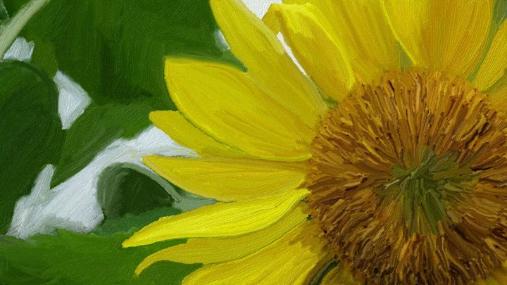 Sunflower - Amanda M. Leppke