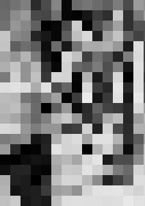 SPECIMENT 150117