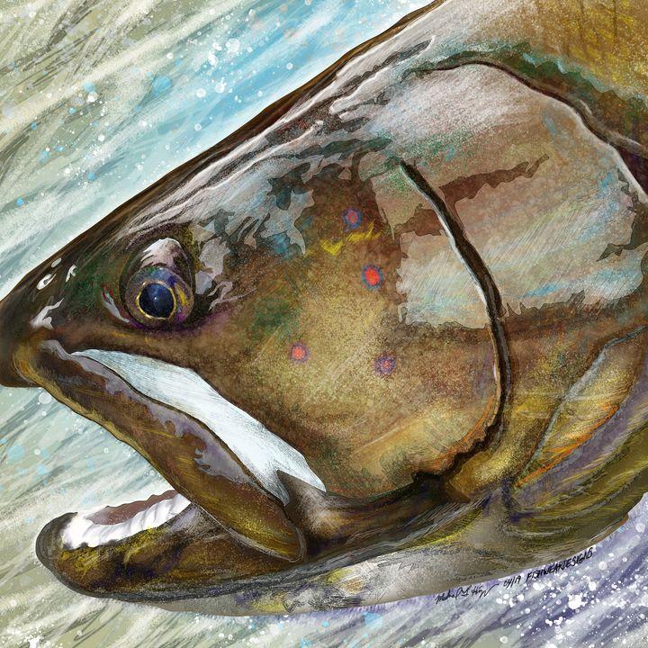 The Bull, Bull Trout Head - FishWearDesigns