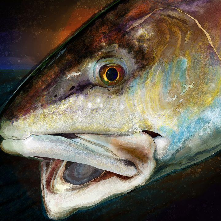The Evening Red Drum - FishWearDesigns