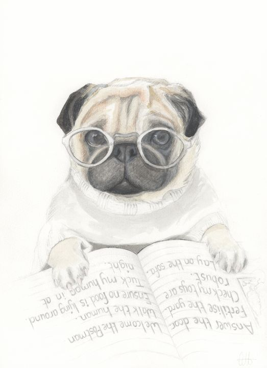 A Pug To-Do List - Quilla