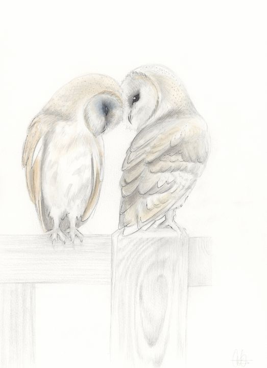 Together They Perch - Quilla